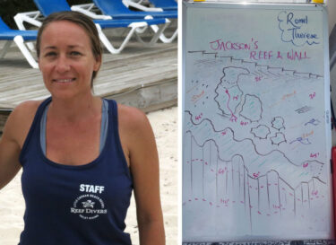 Clearly Cayman Dive Log – Jackson's Reef and Wall