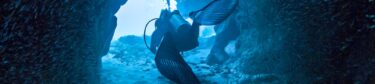Little Cayman Scuba Diving
