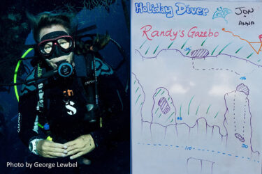 Clearly Cayman Dive Log – Randy's Gazebo
